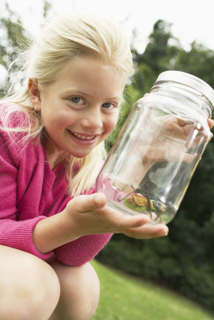 A fun outdoor nature activity for kids to do in the spring is go on a bug hunt.